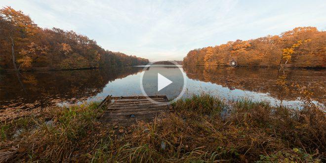 Пара панорам осеннего леса